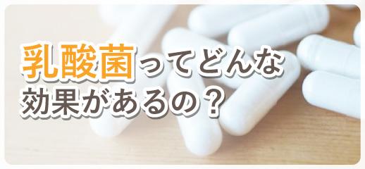 乳酸菌ってどんな効果があるの?