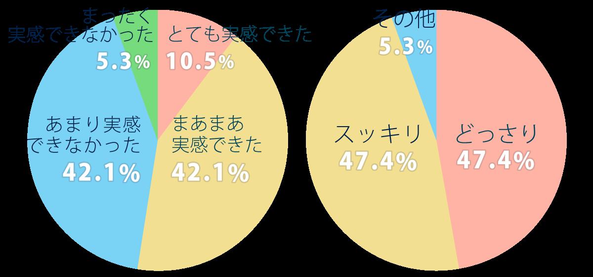 zendamakin_chikara_graf