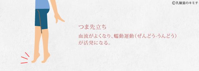 tumasaki_dachi