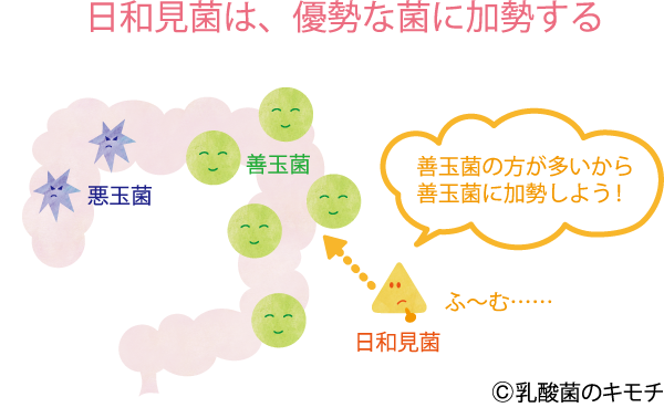 日和見菌は、優勢な菌に加勢する